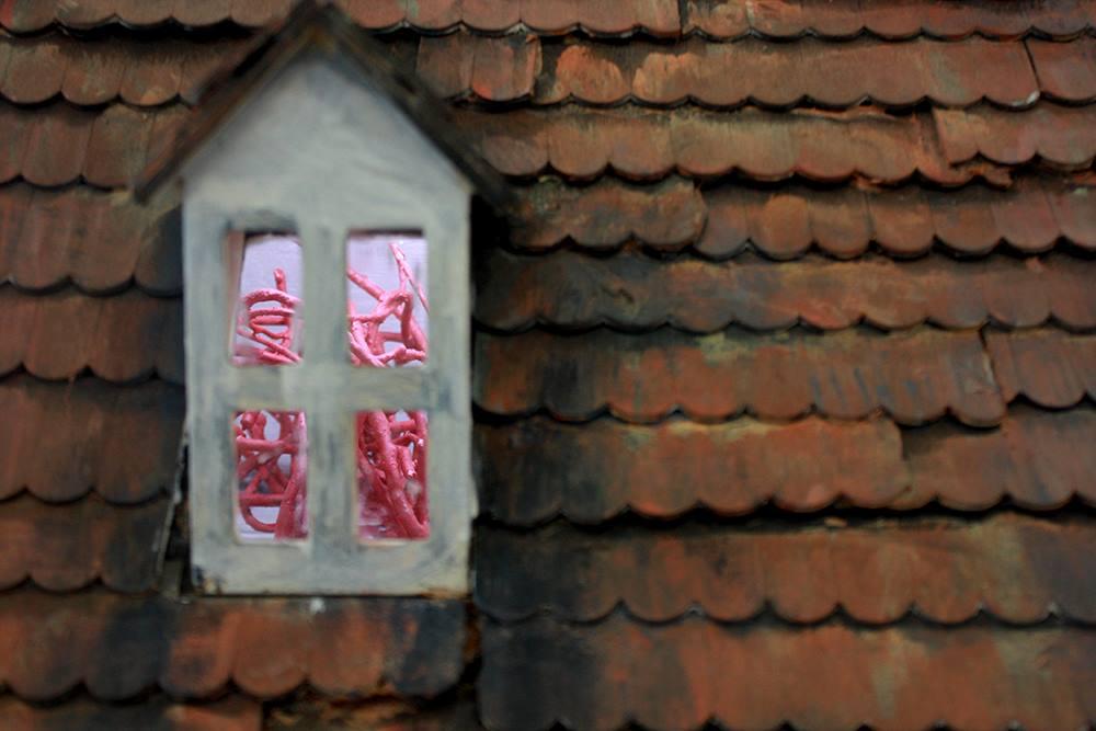 María X en residencia, MicroBios